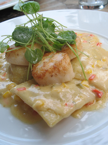 The scallops are done well and served with pasta, an odd combo for a summer dish.